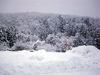 雪壁150cm