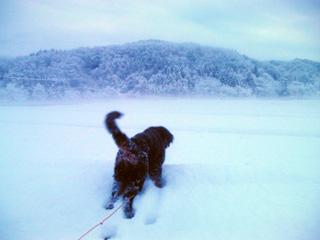 雪とウトロン