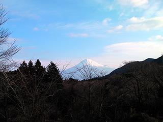 オーランドから臨む富士山