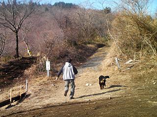 太田パパと散歩