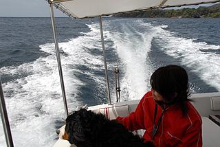 モーターボートに乗る
