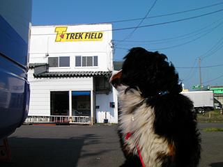 トレックさん新店舗
