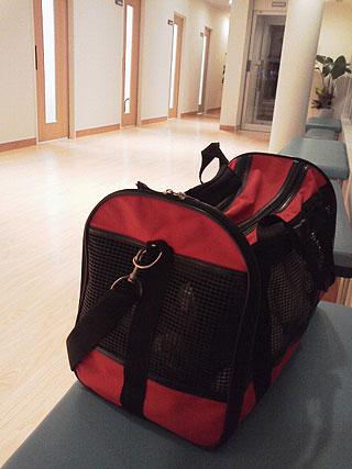 2012-12-12-carrybag.jpg